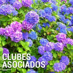 clubes-asociados