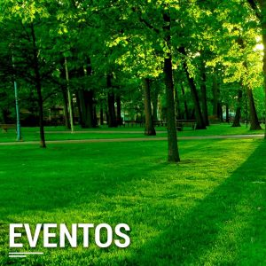 Actividades: Eventos.